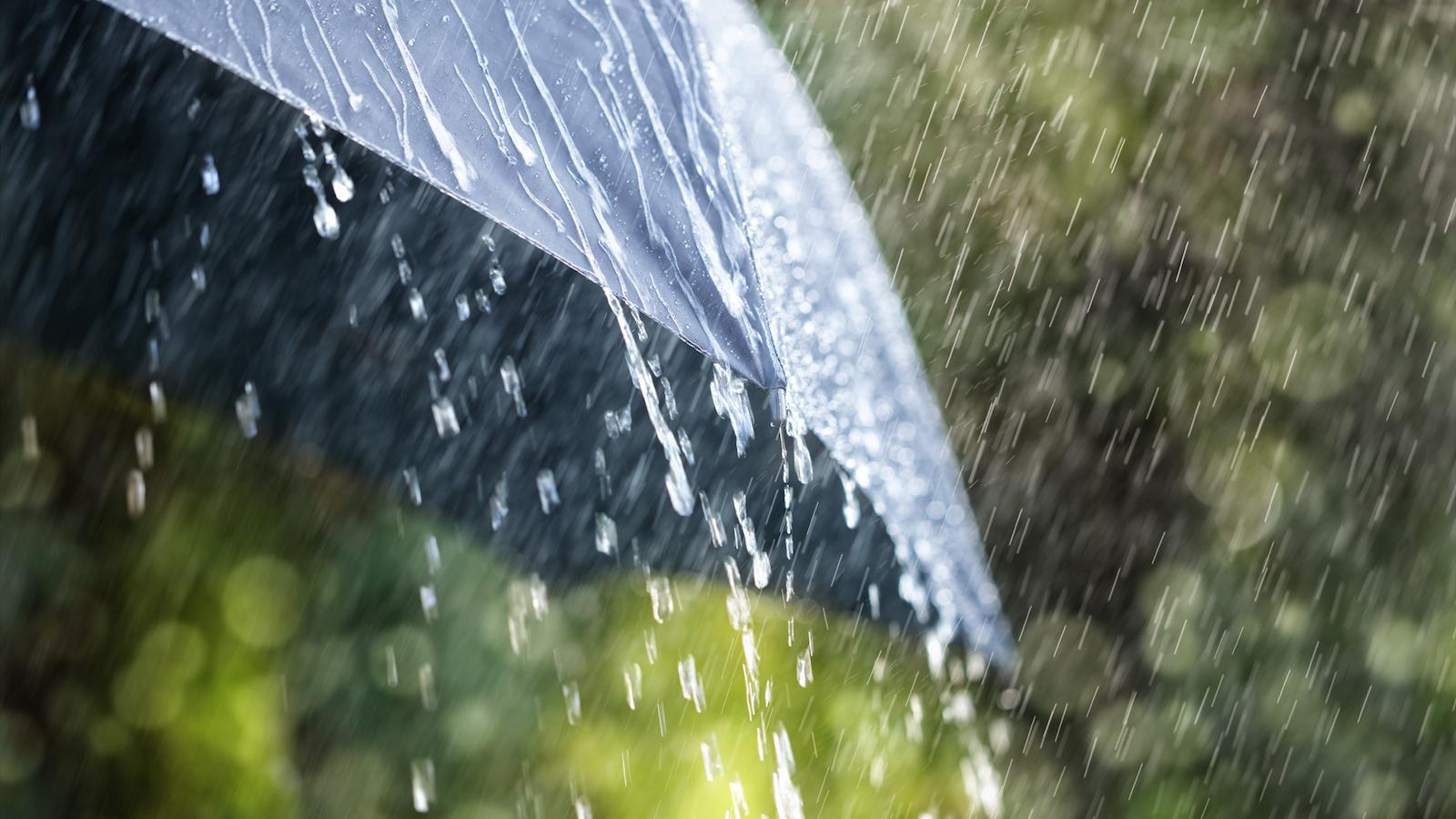 rain-umbrella20181214101704