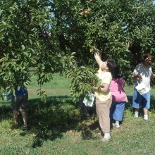 Jessica Crisafulli enjoying apple picking in August.