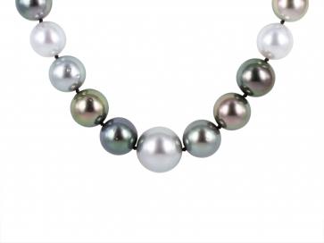 12-15.6 Tahitian Pearl South Sea Pearl & Diamond 21 Inch Necklace