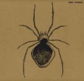 Agonis - Visionquest (Amenthia Recordings)