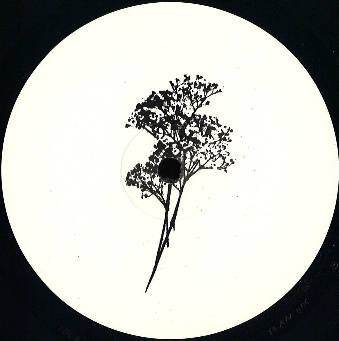 Uchi - Plangent #006 (Plangent Records)
