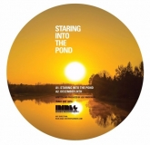 Joey Anderson - Staring Into The Pond (Inimeg Records) **Preorder**