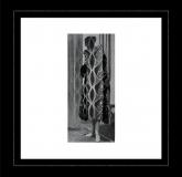 Trikk - Florista EP (Innervisions)