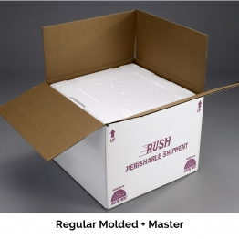 Molded Foam Shippers