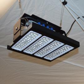 Jameson - High Bay LED Light